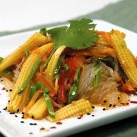 Skinny Noodles Salad with Shirataki Noodles Recipe Photo - Diabetic Gourmet Magazine Recipes