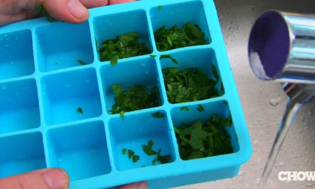 Freezing Fresh Herbs