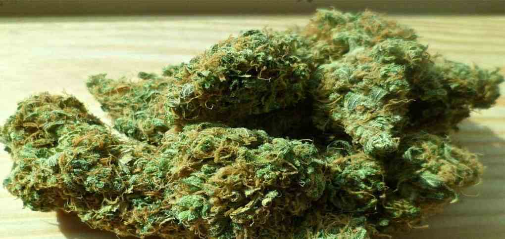 Marijuana-increases-risk-of-pre-diabtes-