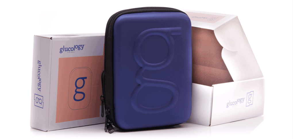 diabetes travel case carrying bag