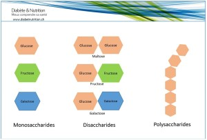 Monosaccharides, disaccharides, polysaccharides, glucides