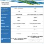 diabète, différences diabète type 1 et type 2, auto-immunité, génétique, insuline, complications, diagnostic