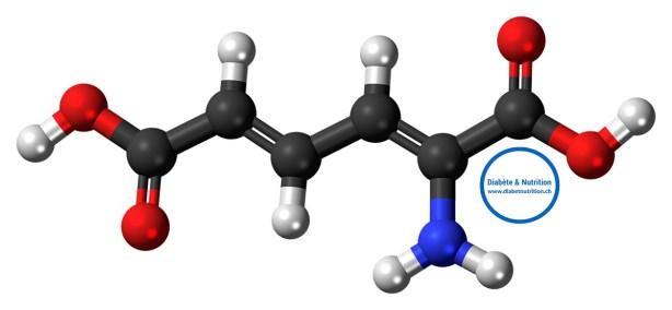 protéines, métabolisme, acides aminés