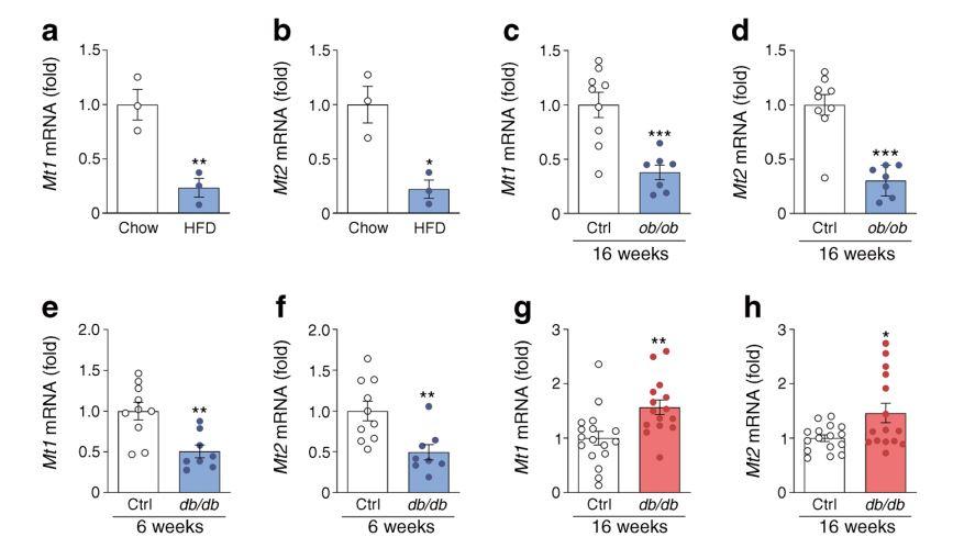 Metallothionein 1 negatively regulates glucose-stimulated