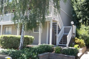 Walnut Creek condo for sale
