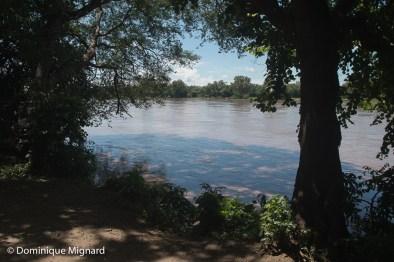 La Luangwa vue du Campement