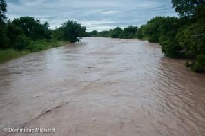 La rivière Mushilashi le 19 mars avec son flot tumultueux.