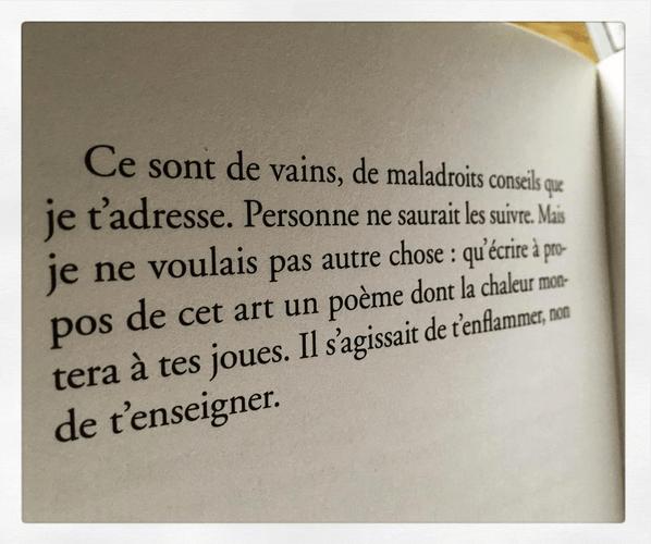 Jean Genet, excipit du Funambule