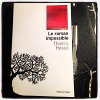 Thierry Hesse : « Le roman est un objet démocratique » (Le grand entretien)