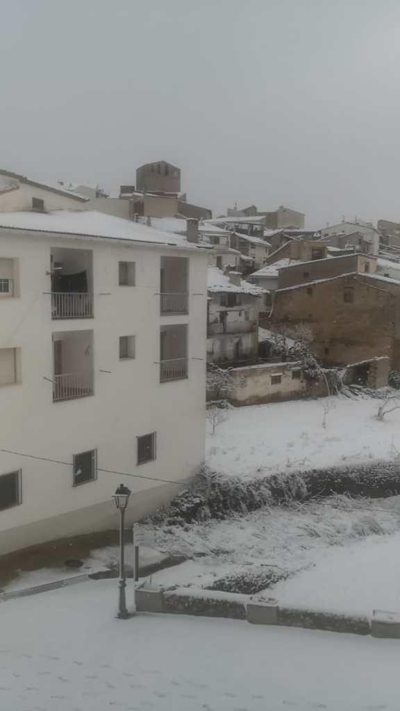 Neu a Portell
