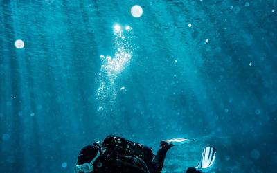 Ramavtal för dykbesiktningar med Telgeinköp