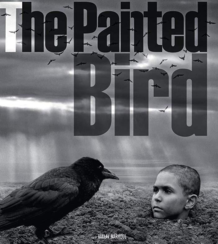 THE PAINTED BIRD: Cehennemin Bilinmez Evrelerine Yolculuk
