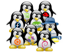 linuxServer, Open source softwares