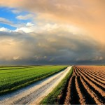 LAND EXPROPRIATION: Where does SA stand re Trends and Standards?