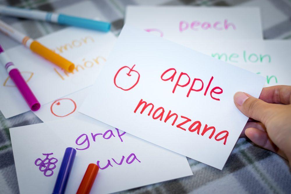 ¿Cuándo empieza el proceso de enseñanza del lenguaje?