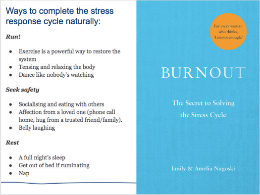 Text and image on the book Burnout by Amelia and Emily Nagoski