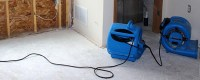 Carpet Water Extraction Service