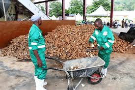 Kpandai district to get  cassava processing factory under 1D-1F says, DCE for the area