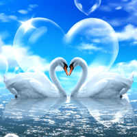 Love Swans Diamond Painting Kit