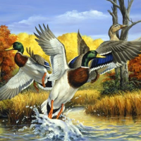 Duck Lake Diamond Painting Kit