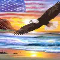 American Eagle Diamond Painting Kit