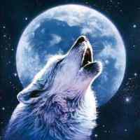 Wolf Moon Howl Diamond Painting Kit
