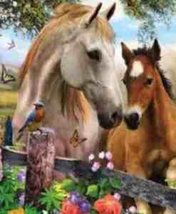 prachtige paarden seos shop