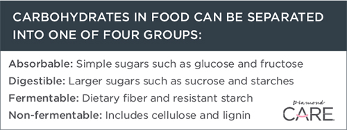 Four Groups of Carbohydrates in Pet Food Guide | Diamond Pet Foods