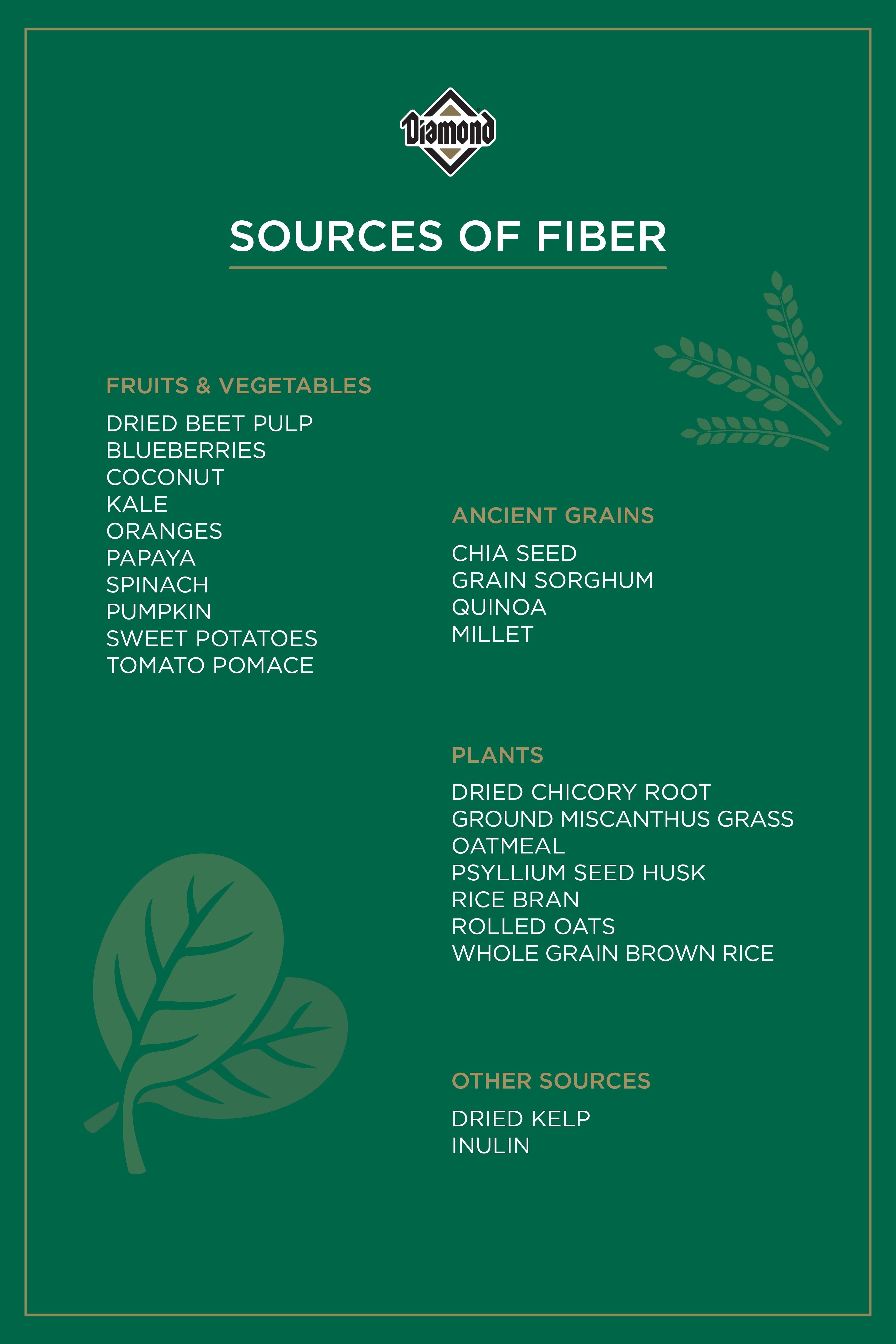 Sources of Fiber Guide   Diamond Pet Foods