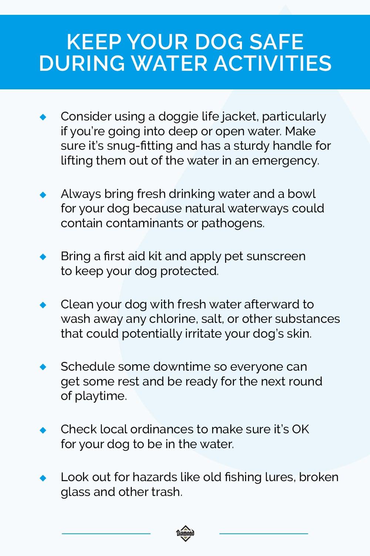 Keep Your Dog Safe During Water Activities Infographic   Diamond Pet Foods
