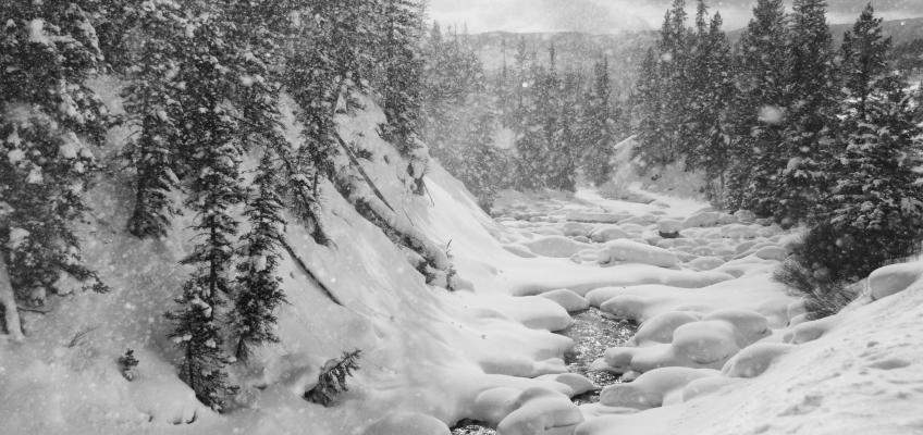 Winter Scenery at Yellowstone National Park