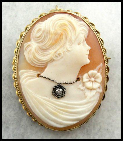 1920's Gibson girl cameo pin/pendant. Via Diamonds in the Library.