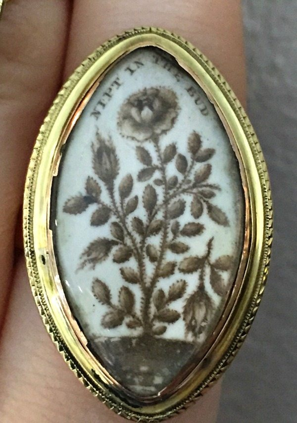 A rare and exquisite Georgian sepia mourning ring with a nipped in the bud motif - in memory of a child. From Glorious Antique Jewelry.