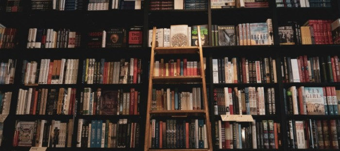 What I'm reading. Bookshelf and ladder photo by Taylor on Unsplash