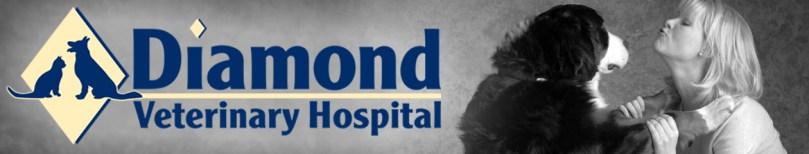Diamond Veterinary Hospital Gaithersburg MD