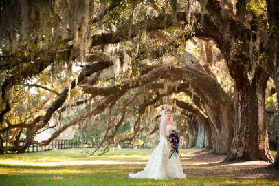 Boone Hall Plantation Bridal Portrait with Oak Trees