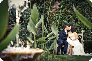 courtney and steven wedding photography testimonial