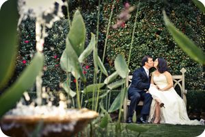 courtney and steven wedding photography testimonial