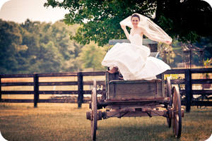 lauren wedding photography testimonial