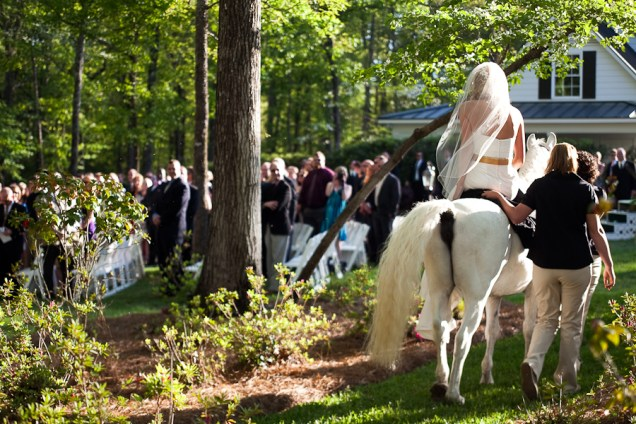 white horse wedding ceremony