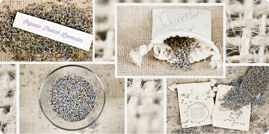 organic french lavender wedding photography branding and packaging