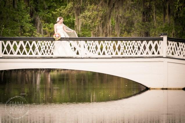Bridal Portrait Magnolia Plantation Charleston Wedding photographer (54)