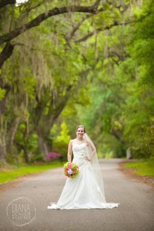 Bridal Portrait Magnolia Plantation Charleston Wedding photographer (69)
