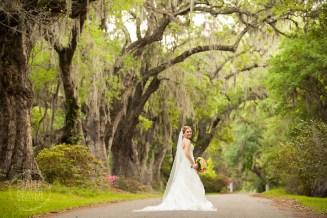 Bridal Portrait Magnolia Plantation Charleston Wedding photographer (77)