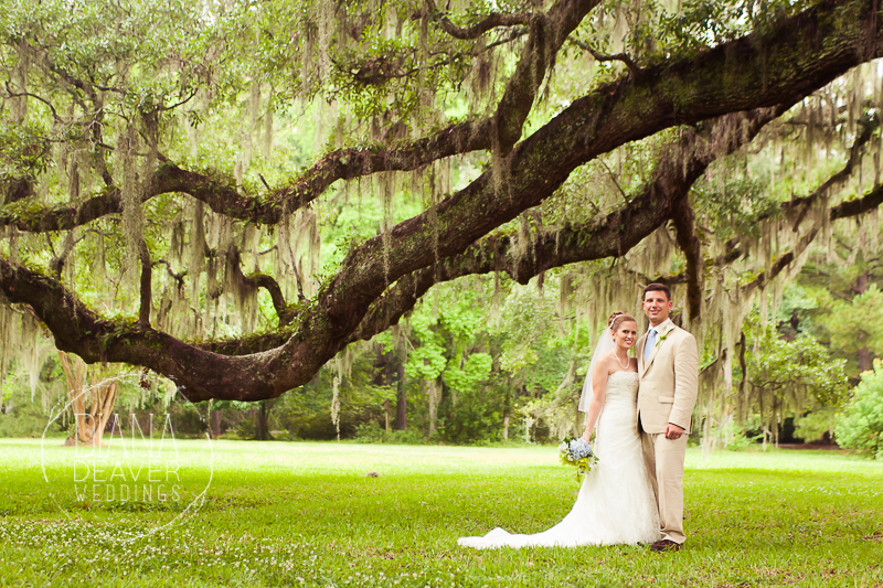 weding day portrait at magnolia plantation by charleston sc wedding photographer Diana Deaver (24)