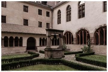 Strasbourg_StPierreLeJeune-14