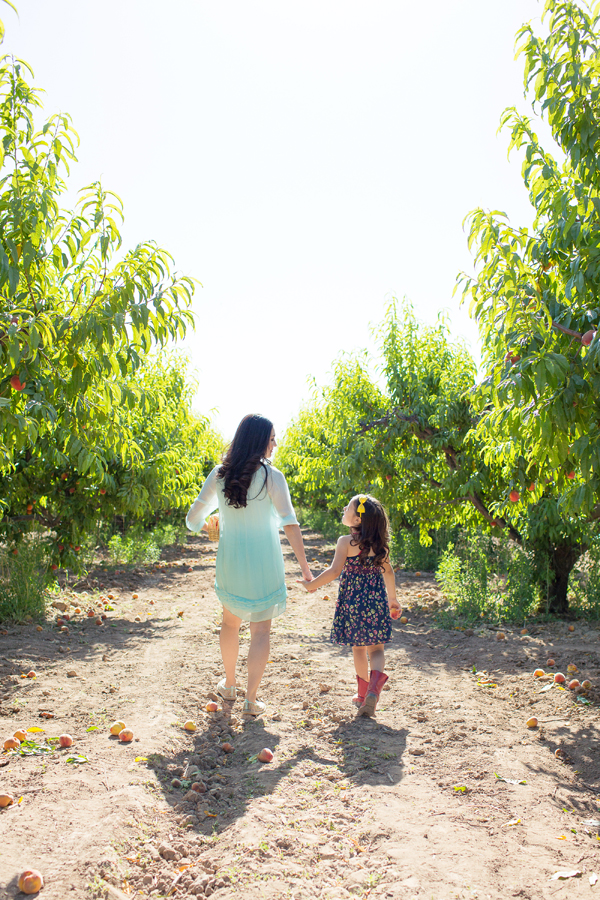 schnepf-farms-peach-orchard-fruit-shoot-picking-diana-elizabeth-photography-012
