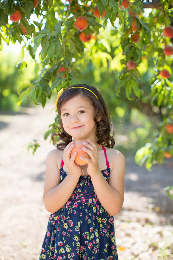 schnepf-farms-peach-orchard-fruit-shoot-picking-diana-elizabeth-photography-022