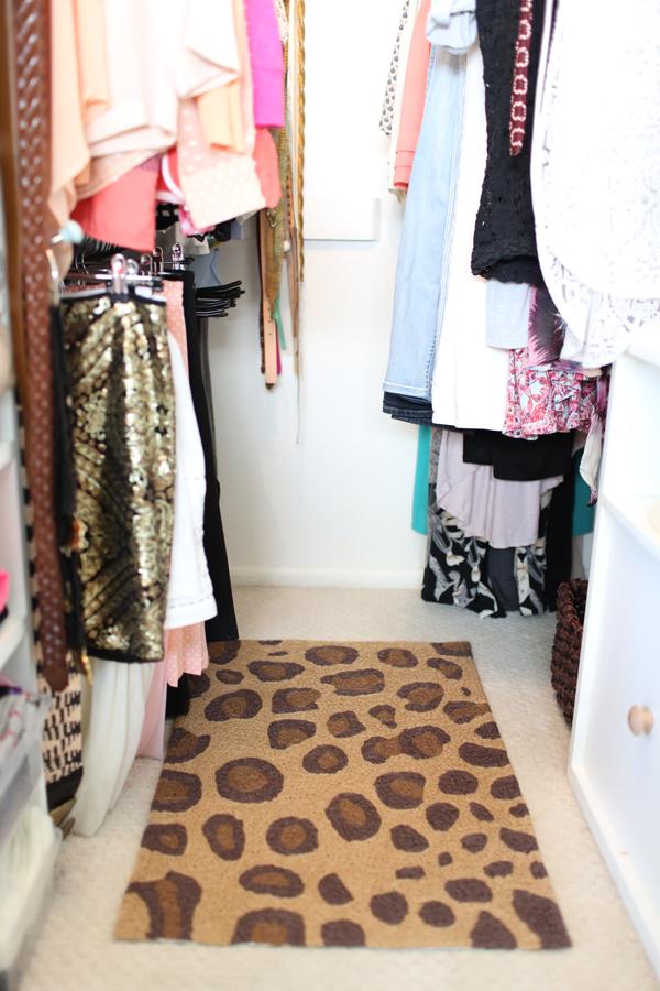 Tiny Closet Solutions 4