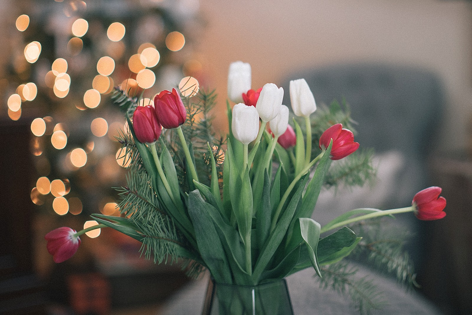 proflowers-christmas-how-to-assemble-flowers